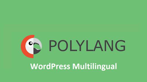 WordPress Website in Multilingual