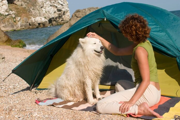 Why Do People Buy Pet Tents